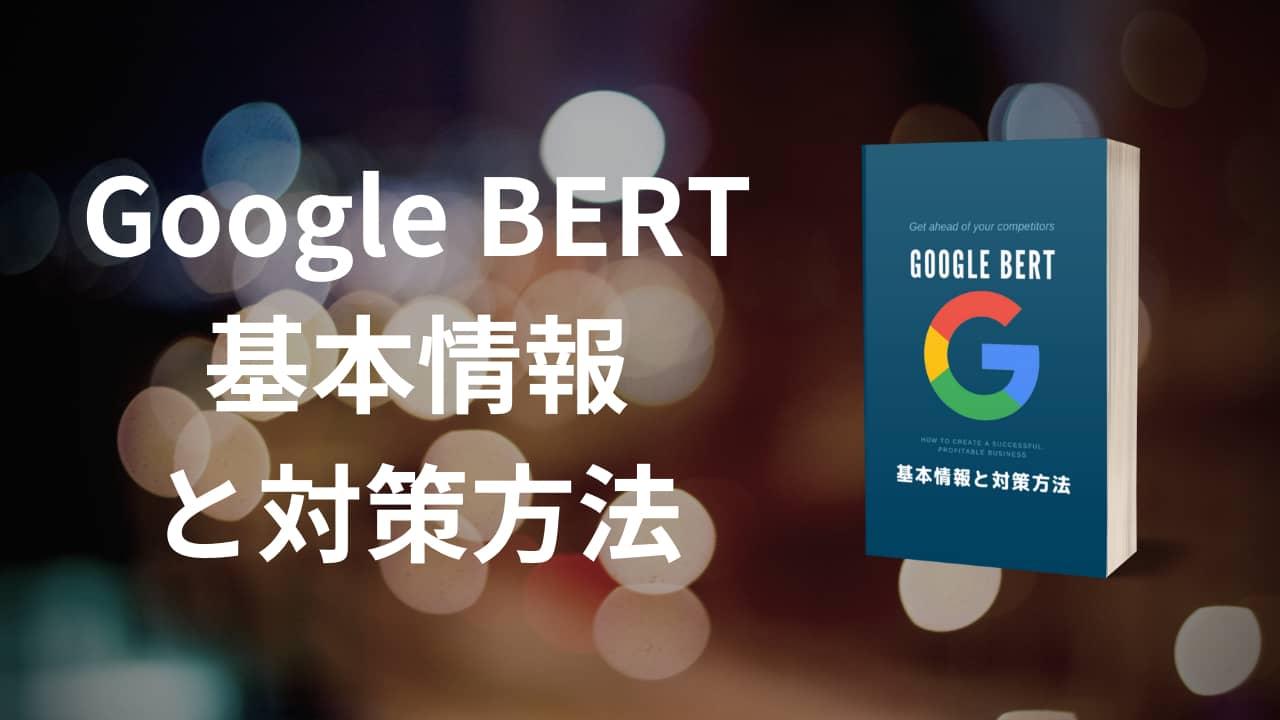 Google Bert基本情報と対策方法